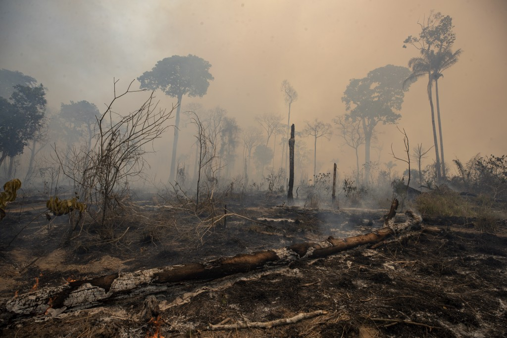 Fire consumes land deforested by cattle farmers near Novo Progresso, Para state, Brazil, Sunday, Aug. 23, 2020. An order putting the military in charg...