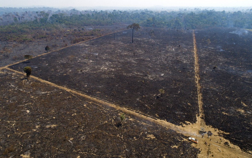 An area consumed by fire and cleared near Novo Progresso in Para state, Brazil, Tuesday, Aug. 18, 2020. While the threat under the administration of P...