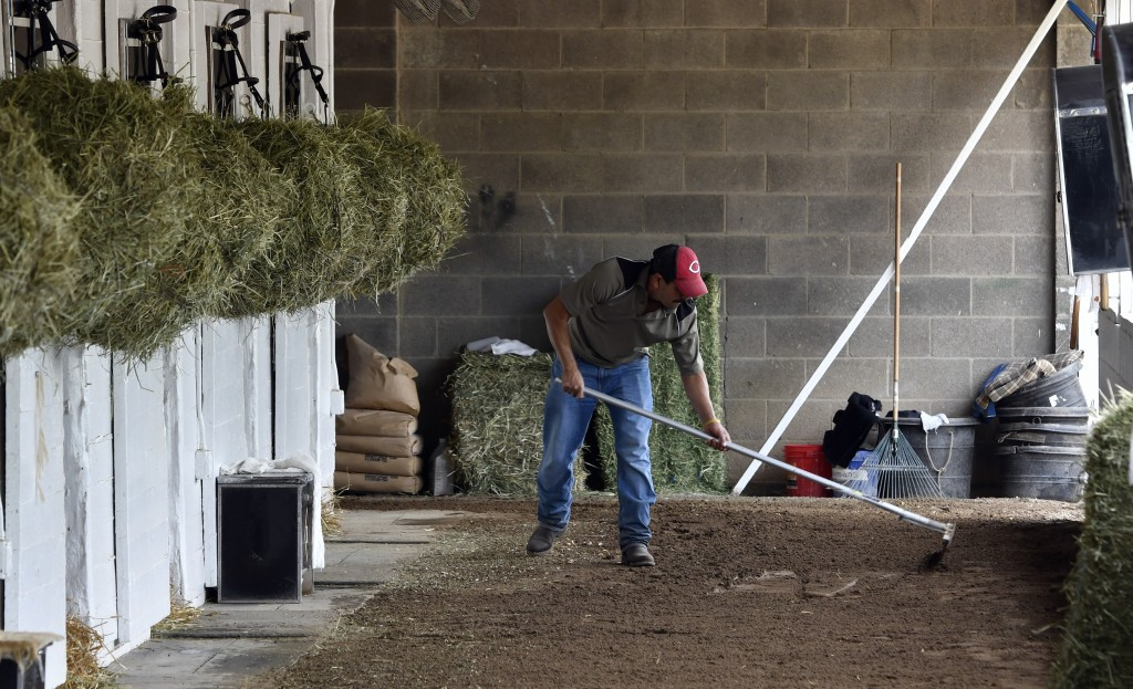 FILE - In this April 19, 2017 file photo, barn worker Jose Cesada, an immigrant worker in the United States on an H-2B visa, rakes the cool down path ...