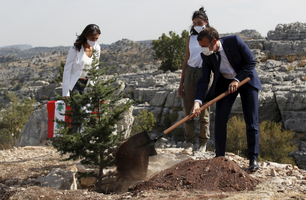 French President Emmanuel Macron plants a cedar with members of the NGO Jouzour Loubnan in Jaj, near Beirut, Tuesday Sept. 1, 2020. French President E...