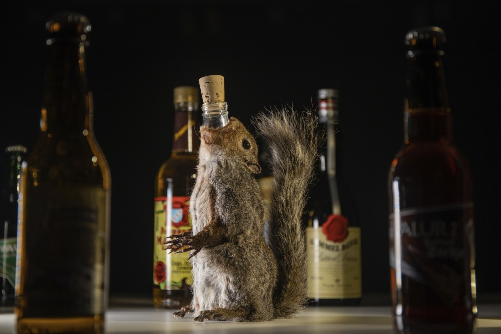 In this photo dated Tuesday, Aug. 25, 2020, made available by Disgusting Food Museum, a selection of drinks, including a strong Scottish brew served f...