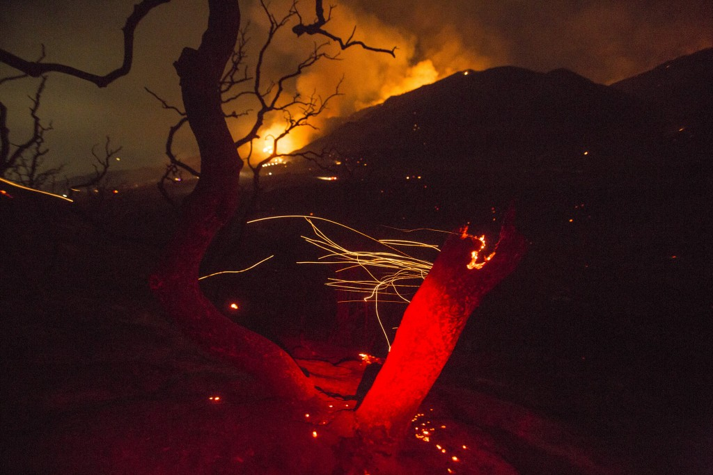 The wind whips embers from a tree burned by a wildfire Yucaipa, Calif., Saturday, Sept. 5, 2020. Three fast-spreading California wildfires sent people...