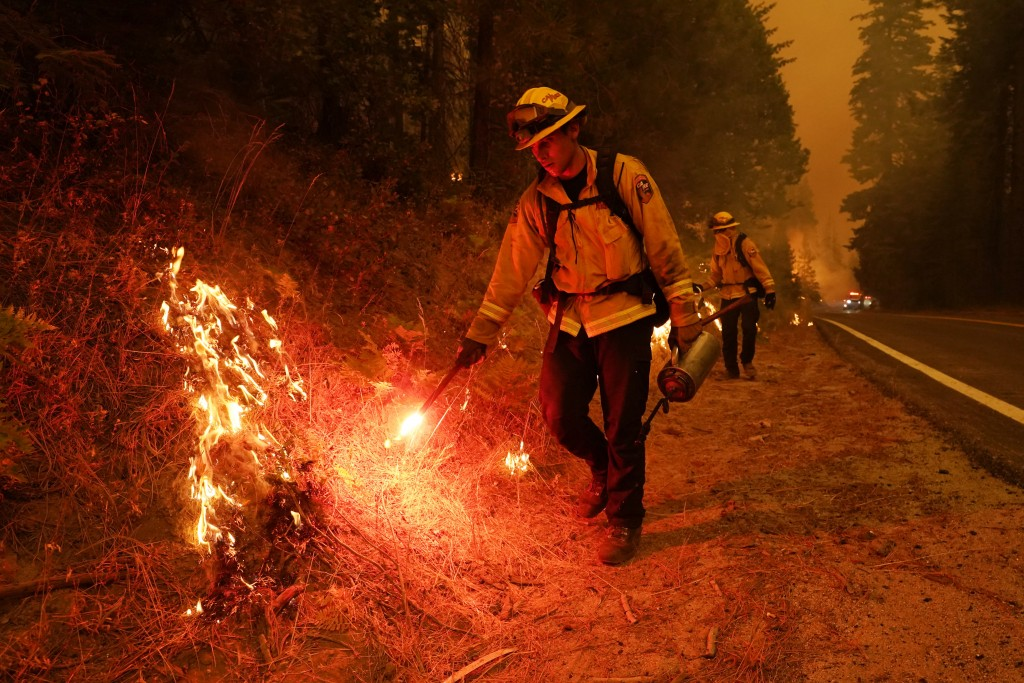 Members of a San Benito Monterey Cal Fire crew take drip torches to ignite a controlled burn as they fight the Creek Fire along state Highway 168, Sun...