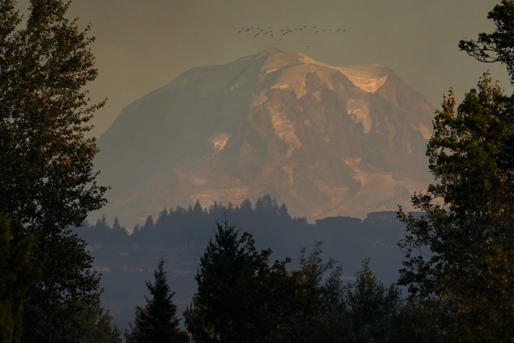 A flock of birds flies above Mount Rainier as smoke from burning wildfires creates a hazy view, Tuesday, Sept. 8, 2020, near Sumner, Wash., south of S...