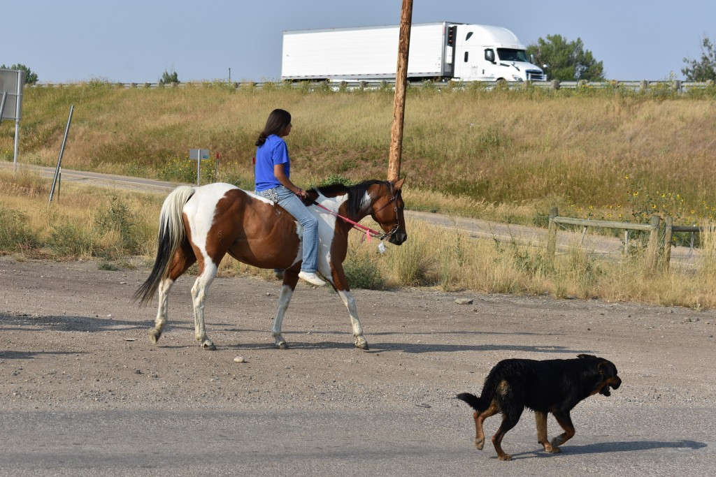 A girl rides a horse near a highway accompanied by a dog on the Crow Indian Reservation in Crow Agency, Mont. on Wednesday, Aug. 26, 2020. This year's...