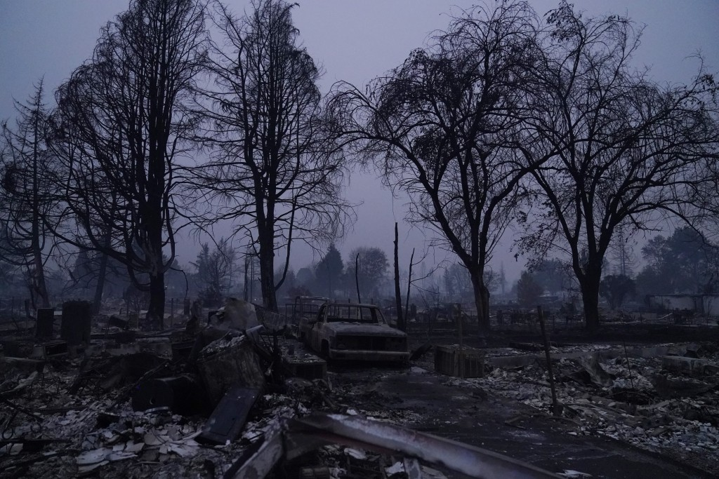 Charred trees stand above a neighborhood devastated by the Almeda Fire, Thursday, Sept. 10, 2020, in Phoenix, Ore. (AP Photo/John Locher)