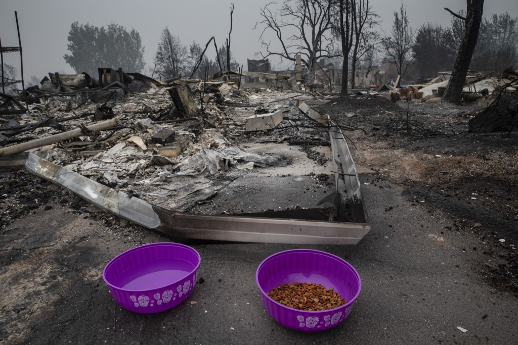 Cat food and water are seen as residents try to find lost pets who went missing during wildfires in Talent, Ore., Friday, Sept. 11, 2020, as destructi...