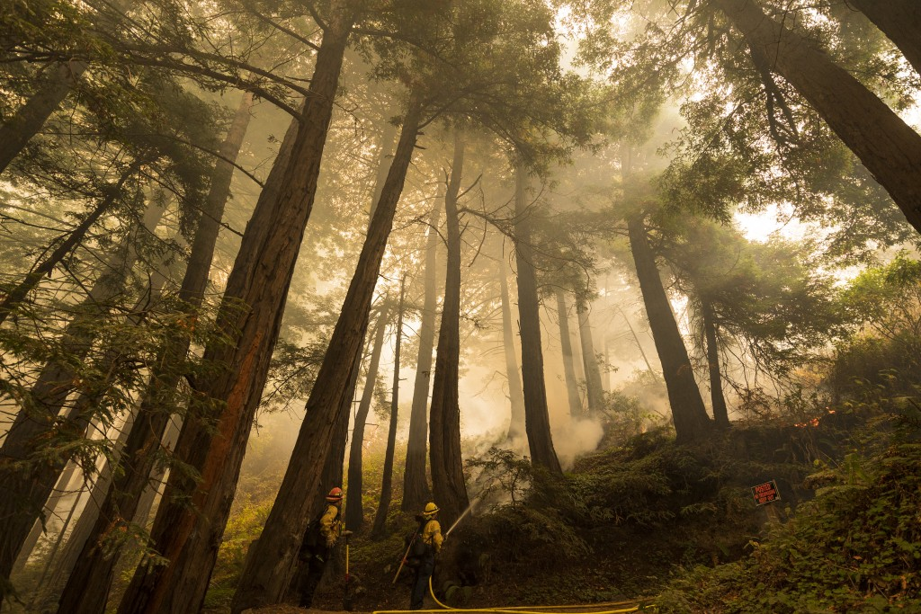 A firefighter shoots an incendiary device during a back burn  to help control the Dolan Fire at Limekiln State Park in Big Sur, Calif,. Friday, Sept. ...