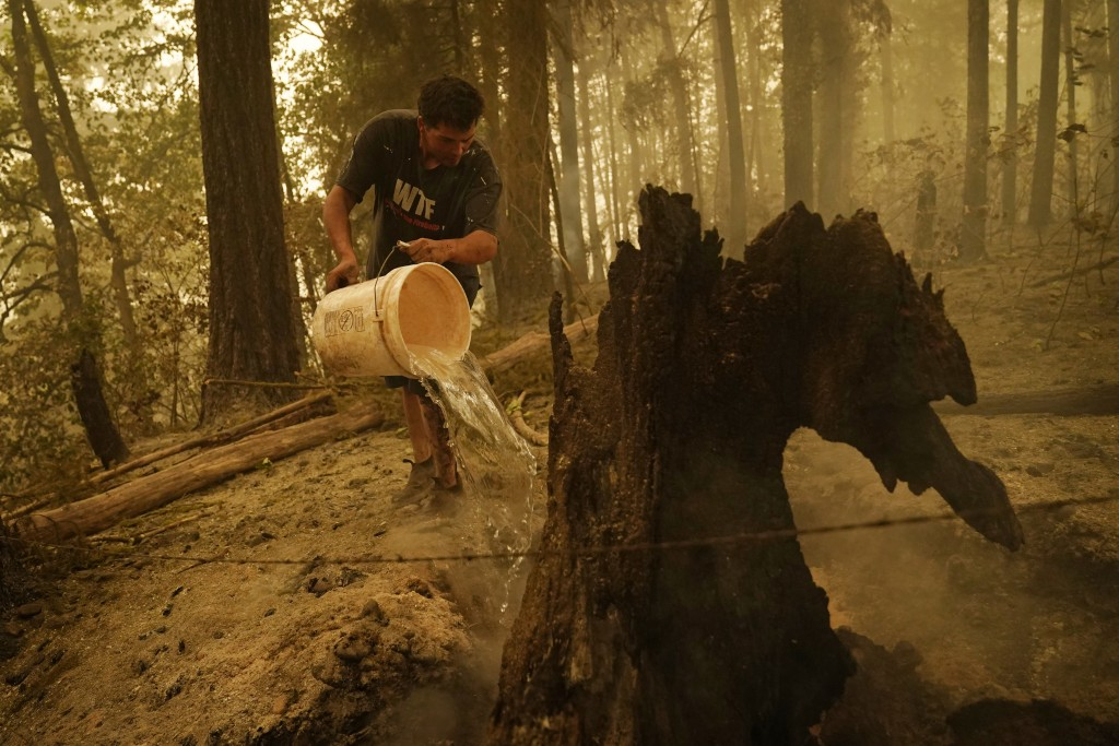 Erik Tucker pours water on a smoldering stump in an area around his home burned by the Beachie Creek Fire, Saturday, Sept. 12, 2020, in Lyons, Ore. Tu...