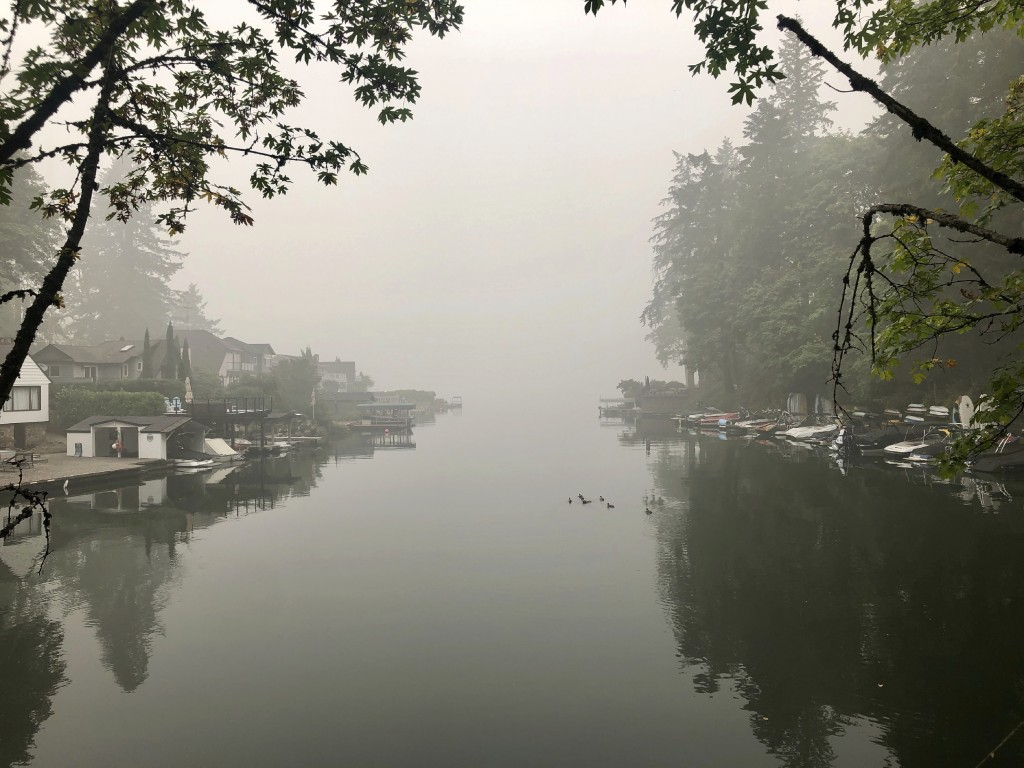 A family of ducks swims on Oswego Lake, which is almost completely obscured by wildfire smoke, in Lake Oswego, Ore. on Monday, Sept. 14, 2020. The ent...