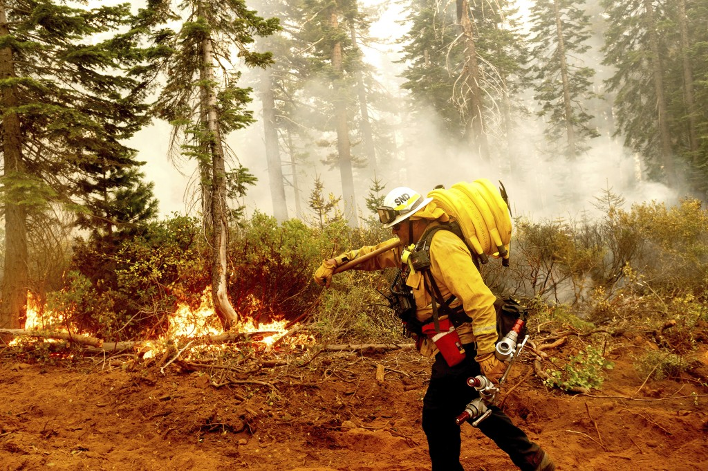 Cal Fire Battalion Chief Craig Newell carries hose while battling the North Complex Fire in Plumas National Forest, Calif., on Monday, Sept. 14, 2020....