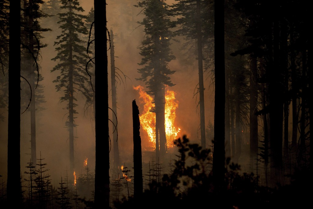 The North Complex Fire burns in Plumas National Forest, Calif., on Monday, Sept. 14, 2020. (AP Photo/Noah Berger)