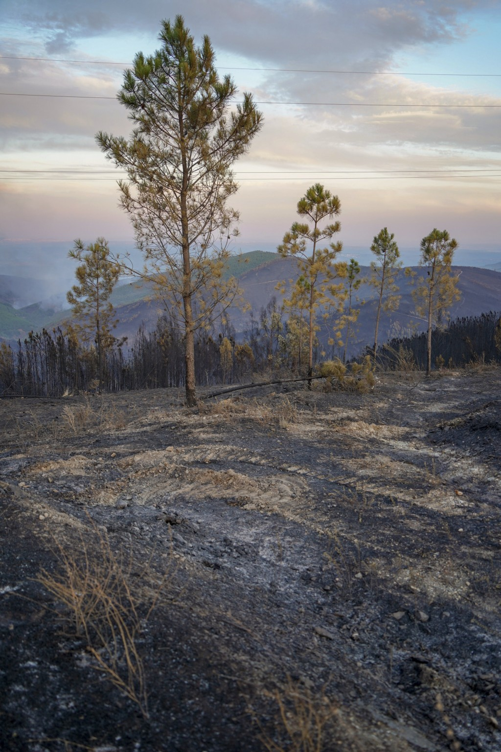 Burnt pine trees stand on a hill as a fire burns in the background between Proenca-a-Nova and Oleiros, Portugal, Monday, Sept. 14, 2020. Almost 1,000 ...