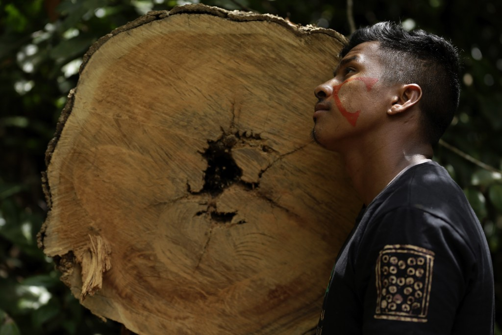 Tenetehara Indigenous man Ota Ka 'Apor, of the Ka'Azar, or Forest Owners, leans against a tree felled by illegal loggers, as the group patrols their l...