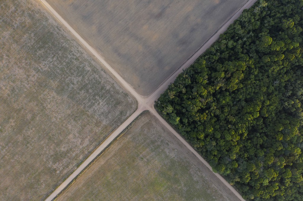 FILE - In this Nov. 30, 2019 file photo, a section of Amazon rainforest stands next to soy fields in Belterra, Para state, Brazil. A decade-long effor...