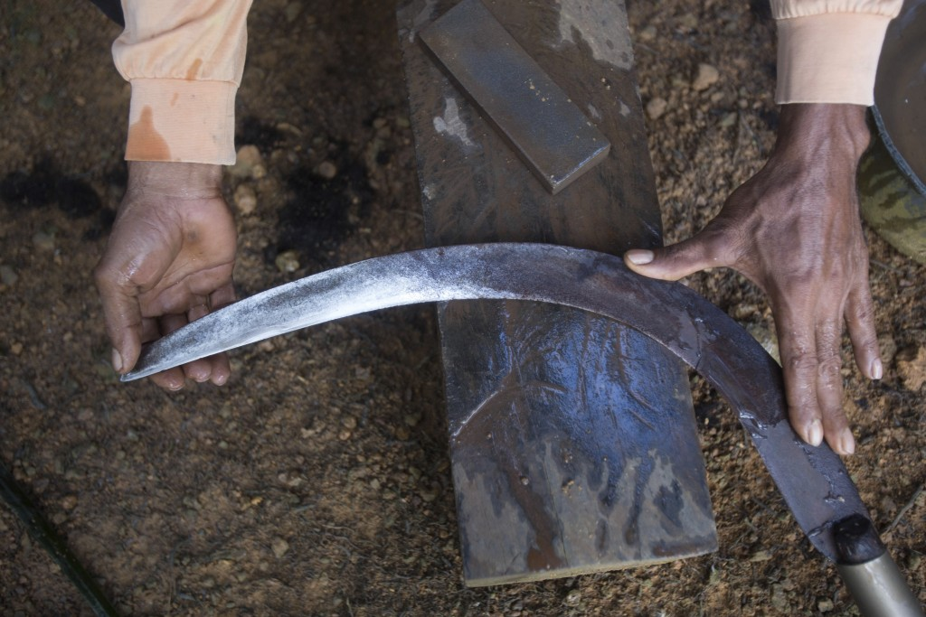 An Indonesian migrant worker sharpens the blade of his sickle used for cutting down palm oil fruit from tall trees in Sabah, Malaysia, on Monday, Dec....