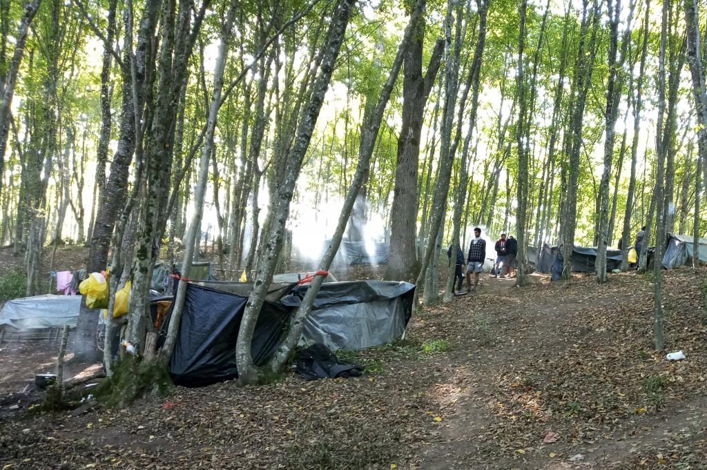 Migrants erect tents in woods near the Croatian border near Kladusa, Bosnia, Thursday, Sept. 24, 2020. A top U.N. official in Bosnia says local author...