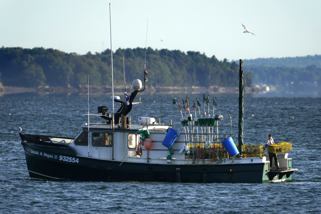 A lobsterman moves traps at the stern of a boat while fishing, Monday, Sept. 21, 2020, off Portland, Maine. The pandemic has posed significant challen...