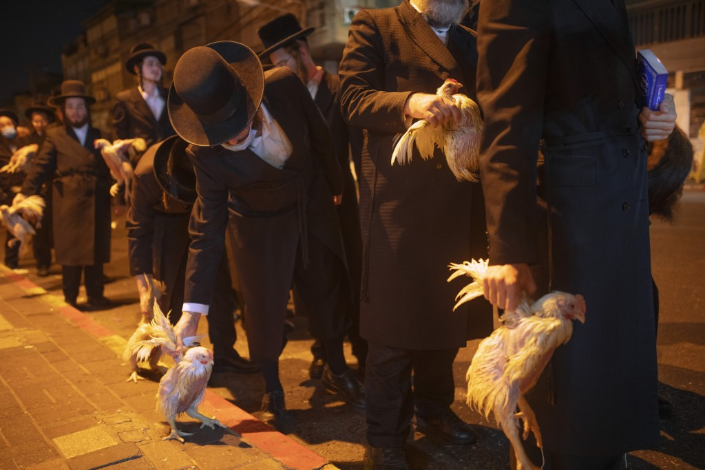 Ultra-Orthodox Jews hold chickens later to be slaughtered during the Kaparot ritual, in Bnei Brak, Israel, Sunday, Sept 27, 2020. Observant Jews belie...