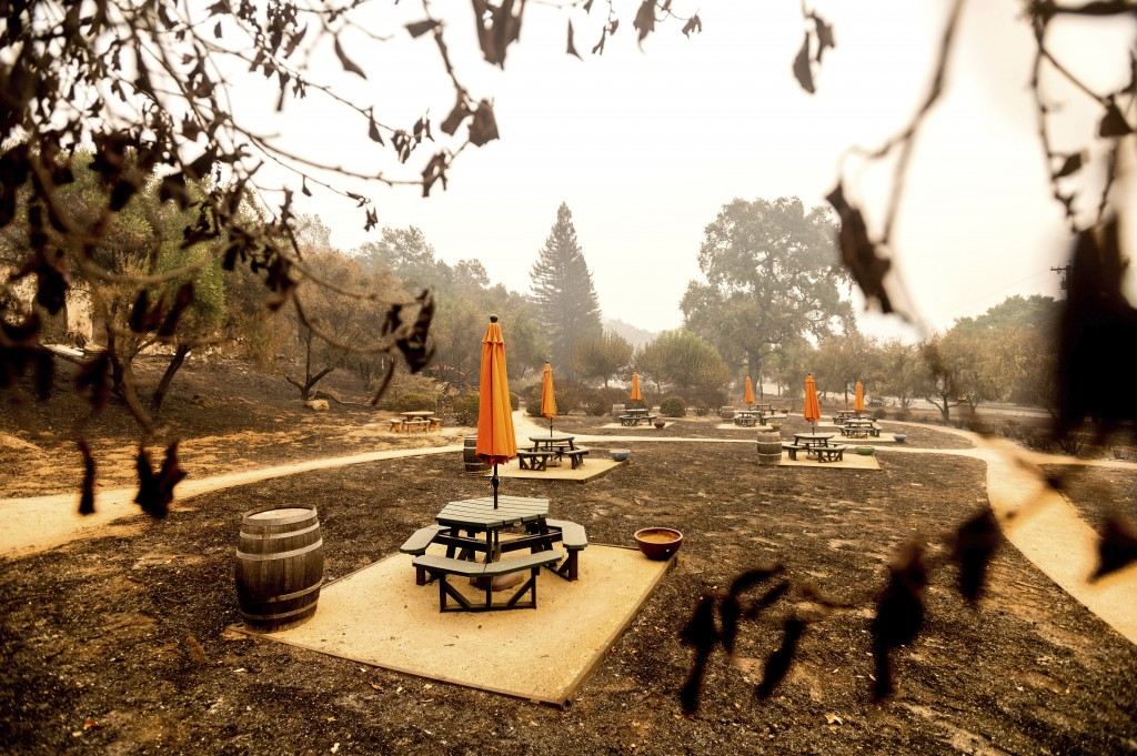 Following the Glass Fire, umbrellas stand in a scorched picnic area at Fairwinds Estate Winery on Thursday, Oct. 1, 2020, in Calistoga, Calif. (AP Pho...