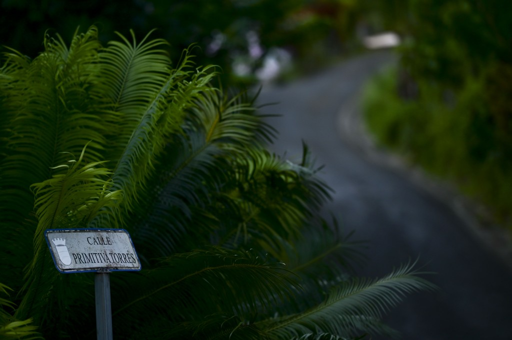 A small sign identifies Primitiva Torres street in the Cañabón neighborhood of Caguas, Puerto Rico, Wednesday, Sept. 30, 2020. The lack of standardize...
