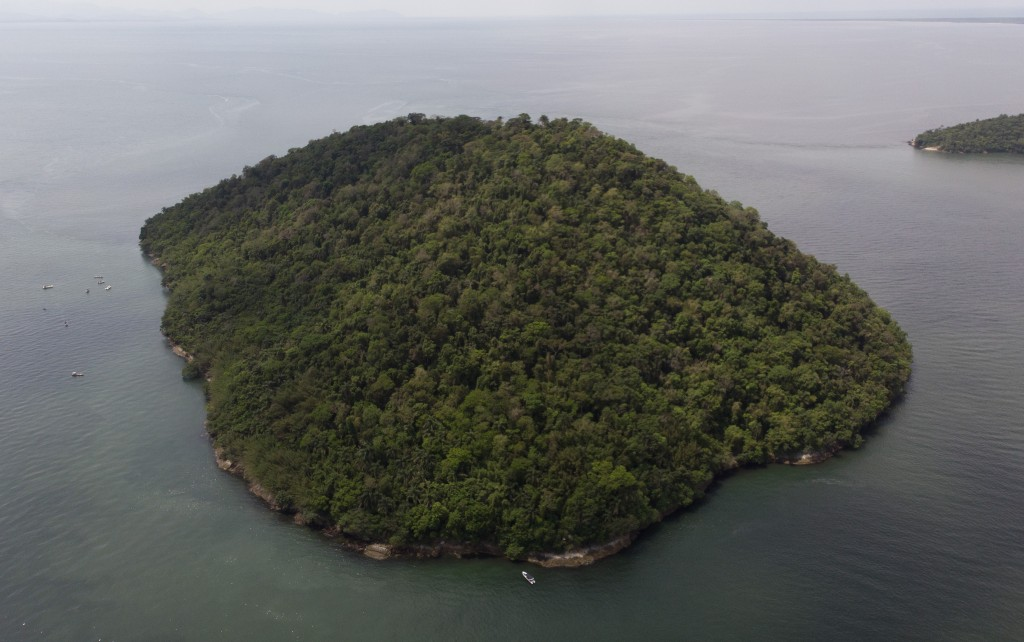 """Furtada Island, popularly known as """"Island of the Cats,"""" in Mangaratiba, Brazil, Tuesday, Oct. 13, 2020. Volunteers are working to ensure the stray an..."""