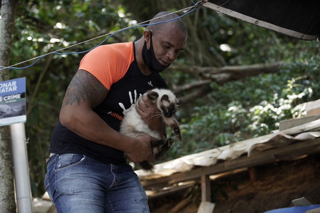 """A volunteer from Animal Heart Protectors holds an injured abandoned cat on Furtada Island, popularly known as """"Island of the Cats,"""" in Mangaratiba, Br..."""