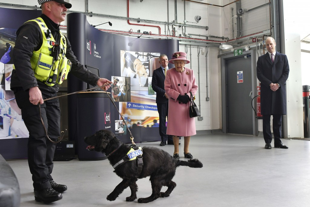 Britain's Queen Elizabeth II and Prince William, right, watch a demonstration of a Forensic Explosives Investigation with explosives detection dog nam...