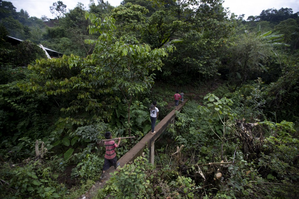 Juan Gabriel Vazquez, center, and his brothers walk to the corn fields to work in the community of Nuevo Yibeljoj in Chiapas state, Mexico, Friday, Se...