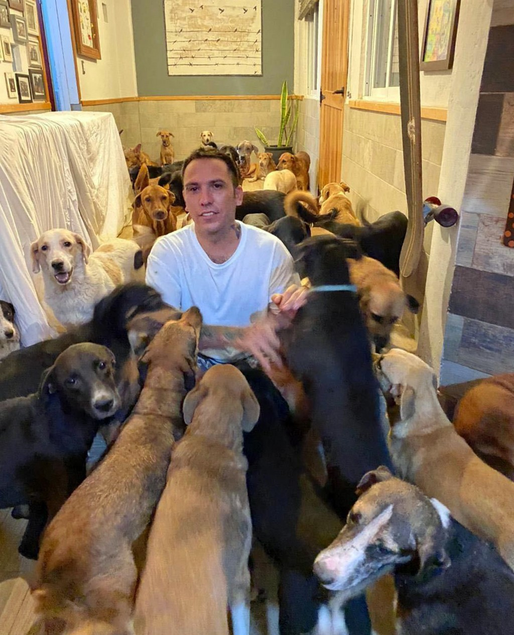 In this Oct. 7, 2020, photo provided by Daniela Rojas, Ricardo Pimentel plays with dogs that he sheltered at his home in Leona Vicario, Mexico, during...