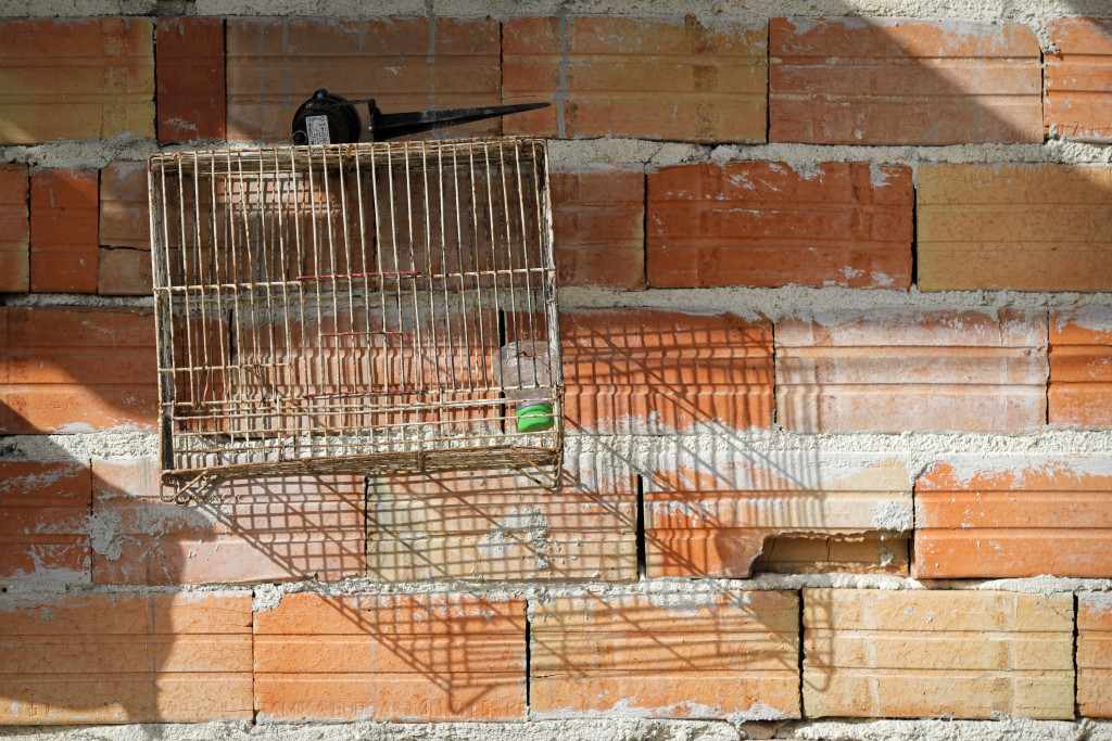 An empty birdcage hangs on a wall of the Topchu family house in a village on the outskirts of Burgas, Bulgaria, Monday, Sept. 28, 2020. Human rights a...
