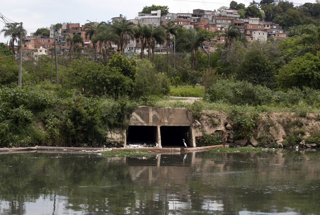 Birds perch near a sewage canal that flows into the Pinheiros River in Sao Paulo, Brazil, Thursday, Oct. 22, 2020. Affected by domestic sewage and sol...