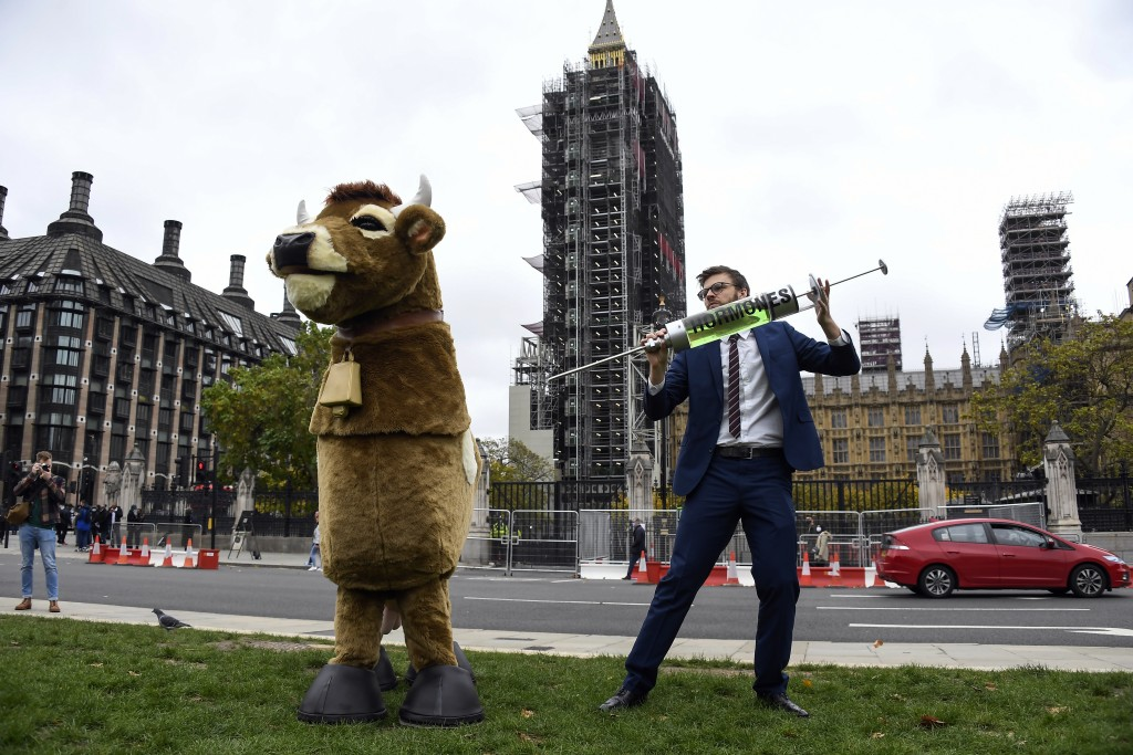 A man imitates the injection of hormones into a man in a cow costume, in Parliament Square, as part of a day of action against the US trade deal, ten ...