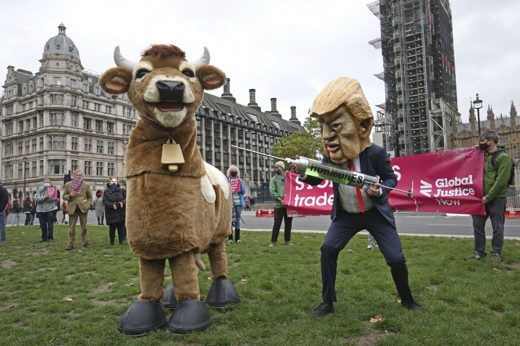 A demonstrator dressed as Donald Trump holding a syringe pretends to inject a pantomime cow during the Stop Trump Coalition protest in Parliament Squa...