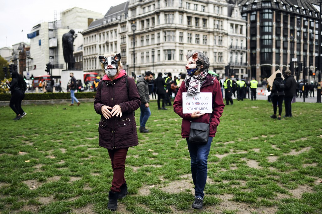 Demonstrators wear pig masks in Parliament Square, as part of a day of action against the US trade deal, ten days before the US Presidential election,...