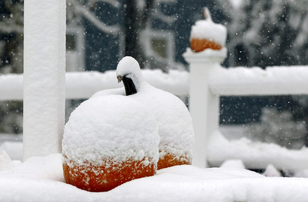 Snow covers pumpkins for sale at Trombetta's Farm during the season's first snowfall, Friday, Oct. 30, 2020, in Marlborough, Mass. (AP Photo/Bill Sike...