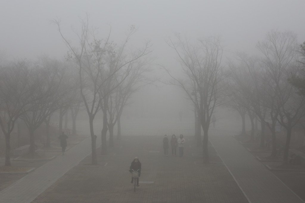 A woman wearing a face mask to help protect against the spread of the coronavirus rides a bicycle on a street covered in a fog in Goyang, South Korea,...