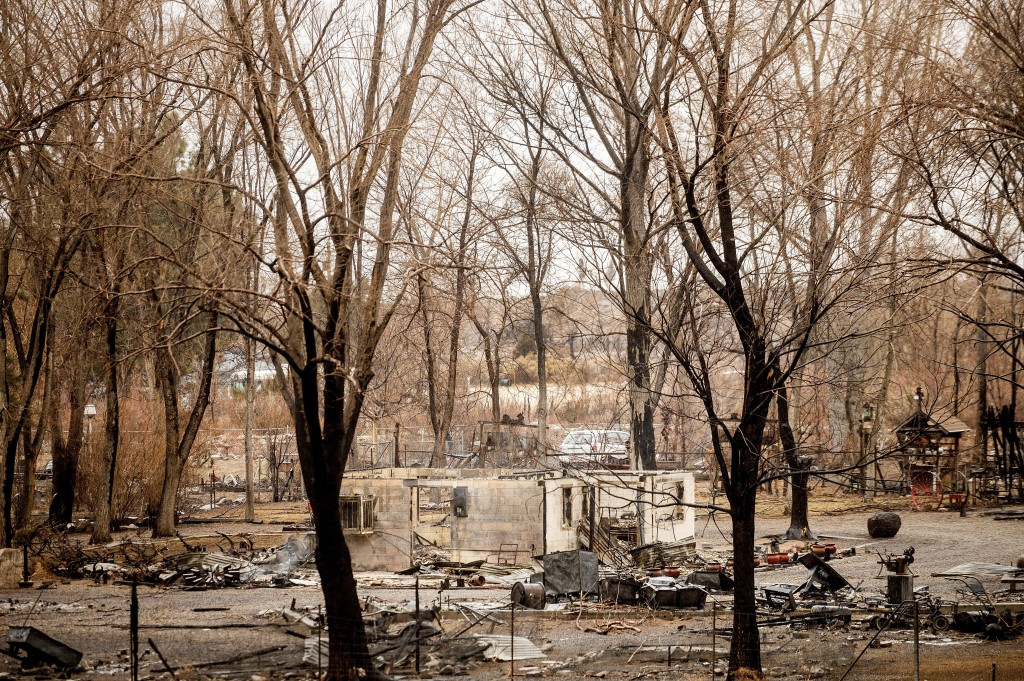 A scorched home rests among trees after the Mountain View Fire tore through the Walker community in Mono County, Calif., Wednesday, Nov. 18, 2020. (AP...