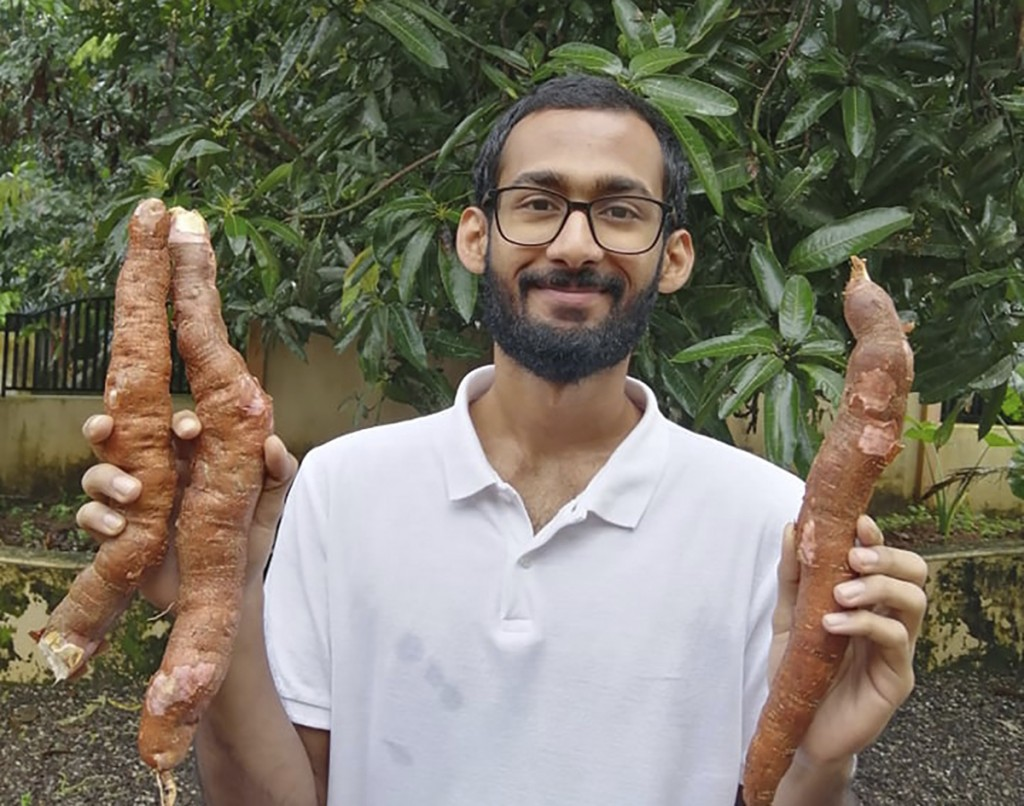 In this Sept. 11, 2020 photo, provided by Sijo Zachariah, Zachariah holds tapioca roots harvested from the farm that he and his father started during ...