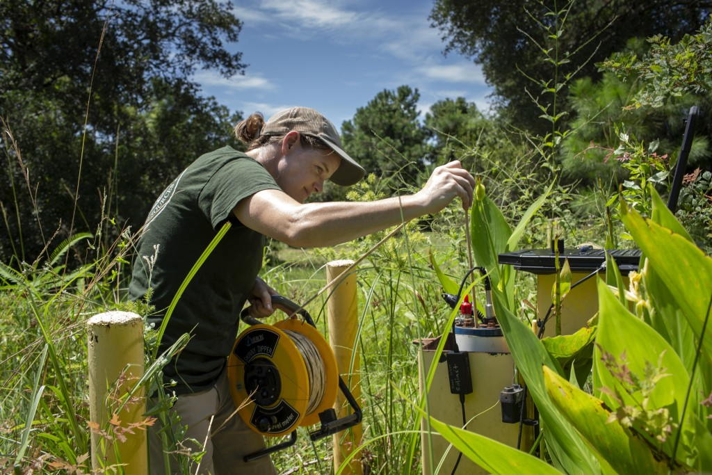 This photo provided by the University of Maryland shows Brooke Czwartacki taking a measurement in a well in Awendaw, South Carolina. Czwartacki regula...