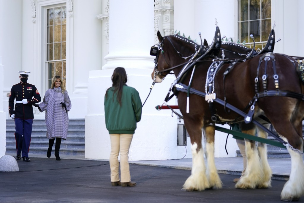 First lady Melania Trump walks to see the 2020 Official White House Christmas tree as it is presented on the North Portico of the White House, Monday,...