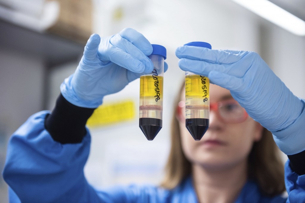 FILE  - In this undated file photo issued by the University of Oxford on Monday, Nov. 23, 2020, a researcher in a laboratory at the Jenner Institute i...