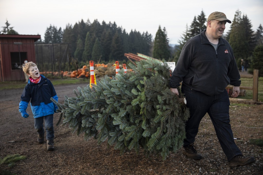Tim Daley and son Jacob, 9 years, from Tualatin carry their freshly cut Christmas tree at Lee farms on Saturday, Nov. 21, 2020 in Tualatin, Ore. It's ...