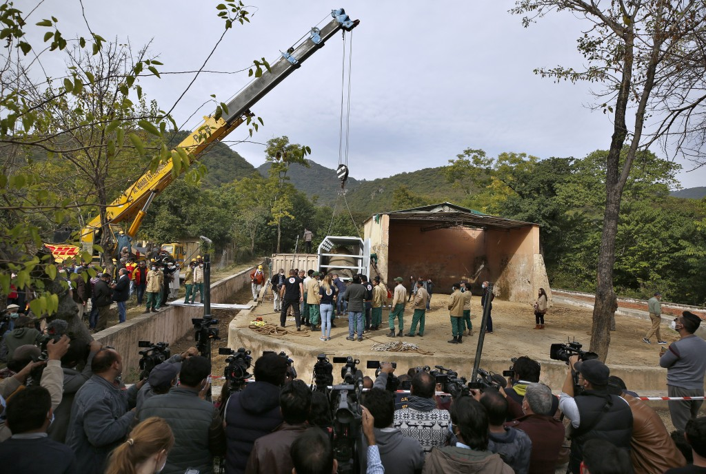 Pakistani wildlife workers and experts from the international animal welfare organization Four Paws use a crane to move a crate carrying an elephant n...