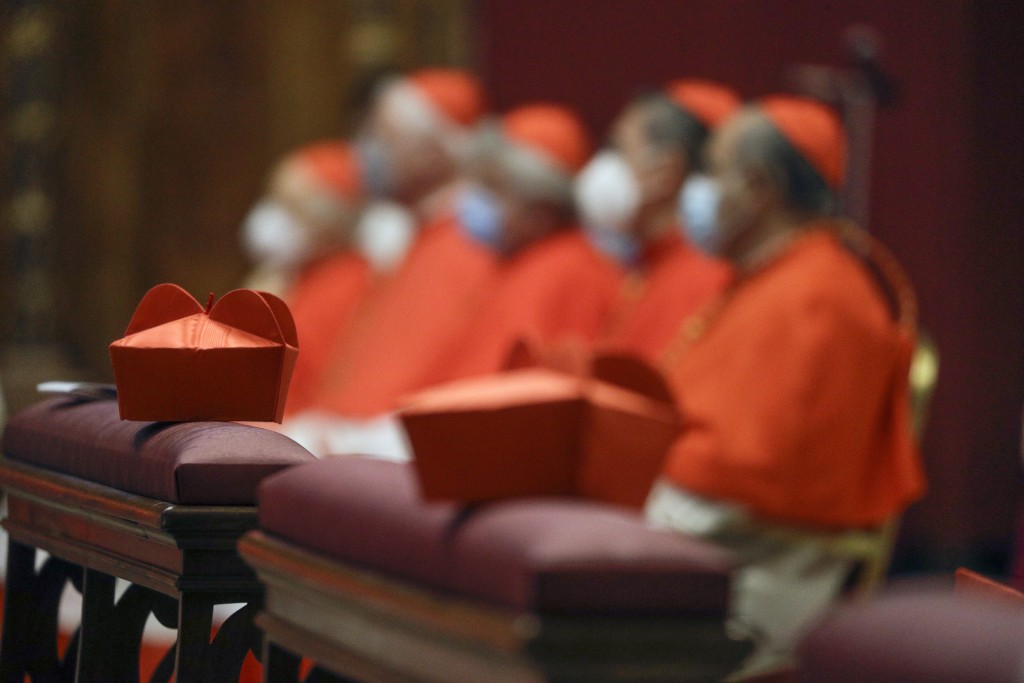Cardinals sit as Pope Francis celebrates Mass the day after he raised 13 new cardinals to the highest rank in the Catholic hierarchy, at St. Peter's B...