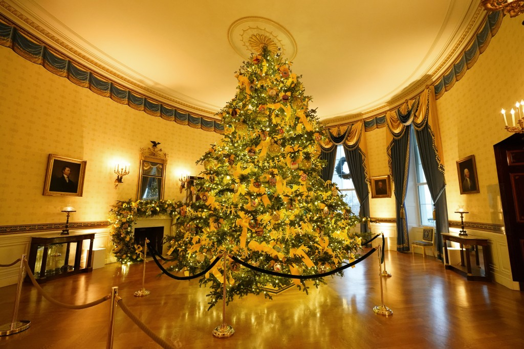 The Blue Room of the White House is decorated during the 2020 Christmas preview, Monday, Nov. 30, 2020, in Washington. (AP Photo/Patrick Semansky)