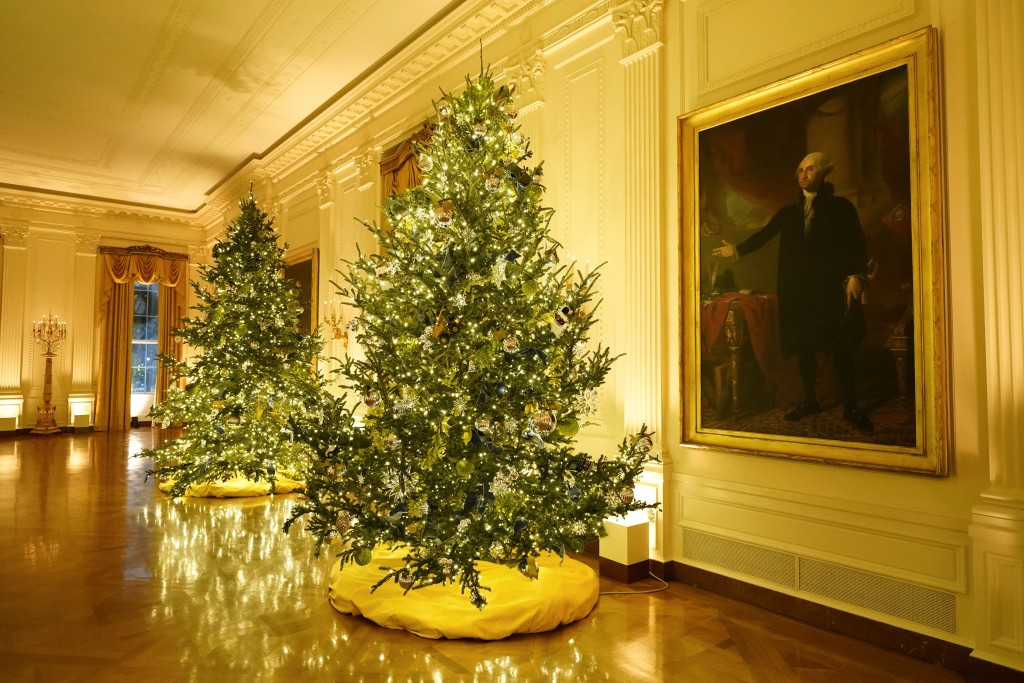 The East Room of the White House is decorated during the 2020 Christmas preview, Monday, Nov. 30, 2020, in Washington. (AP Photo/Patrick Semansky)