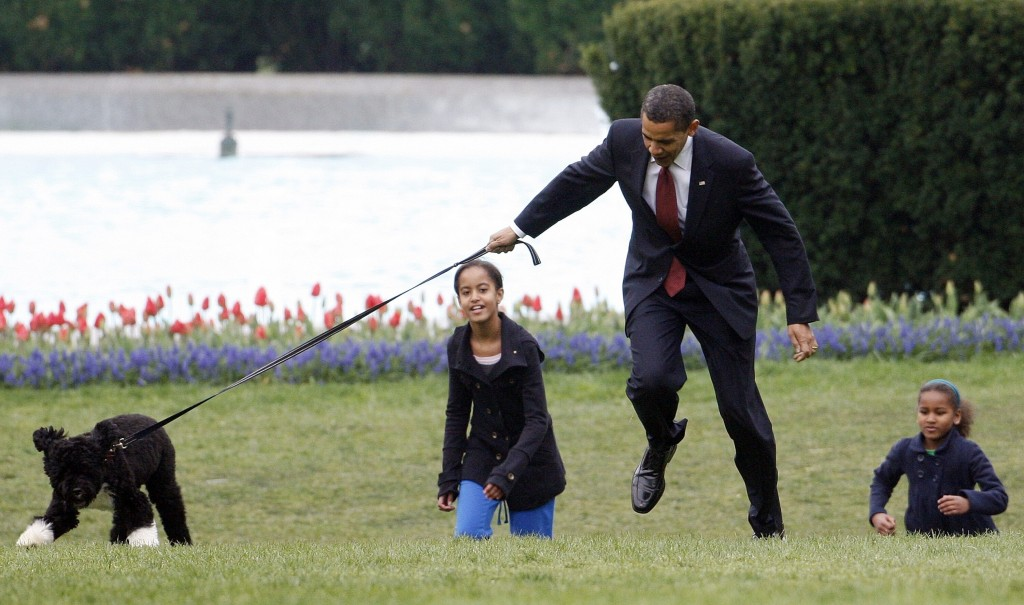 FILE - In this April 14, 2009, file photo President Barack Obama is almost jerked off his feet as he shows off their new dog Bo, a 6-month-old Portugu...
