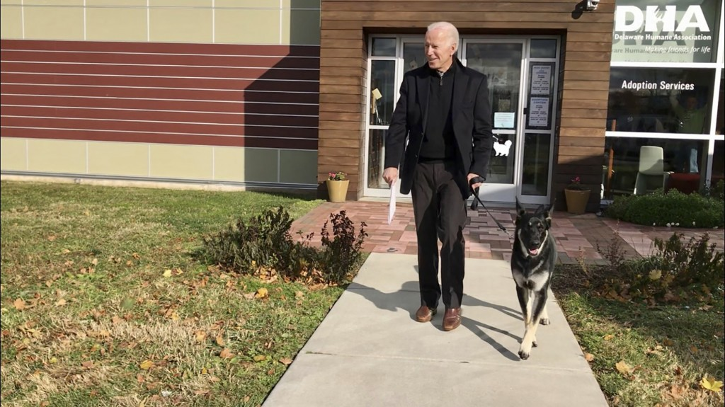 FILE - This Nov. 16, 2018, photo, file provided by the Delaware Humane Association shows Joe Biden and his newly-adopted German shepherd Major, in Wil...