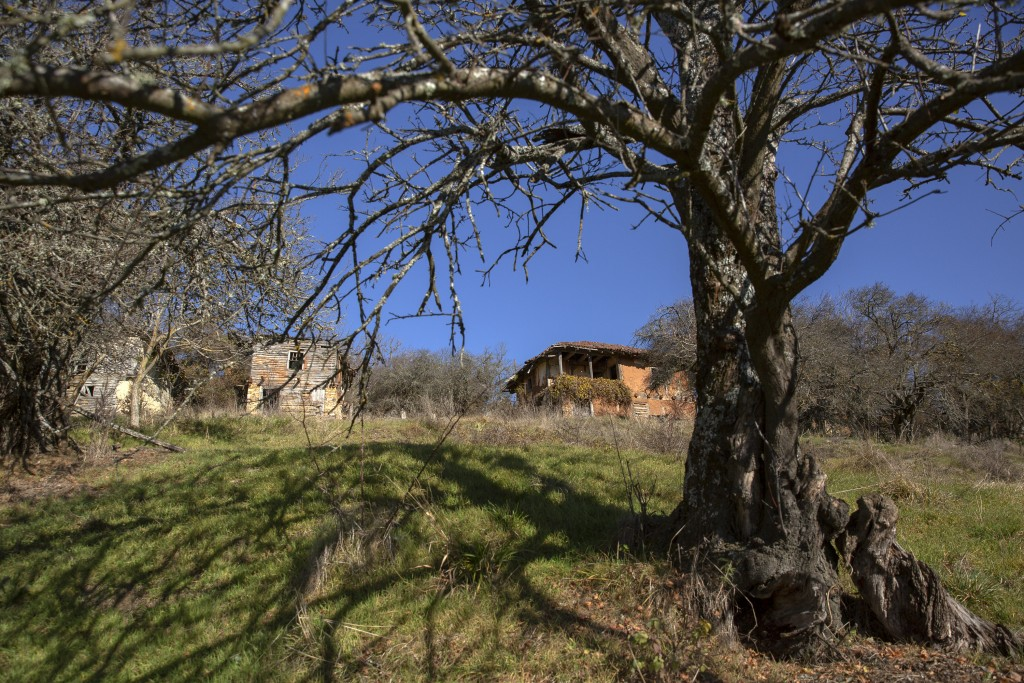Abandoned households seen in the deserted village of Vaganesh, the only and lone resident a 92 year old Blagica Dicic still living here on Thursday, N...